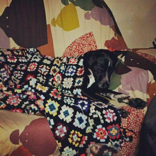 I Love the way she Sleeps :-)