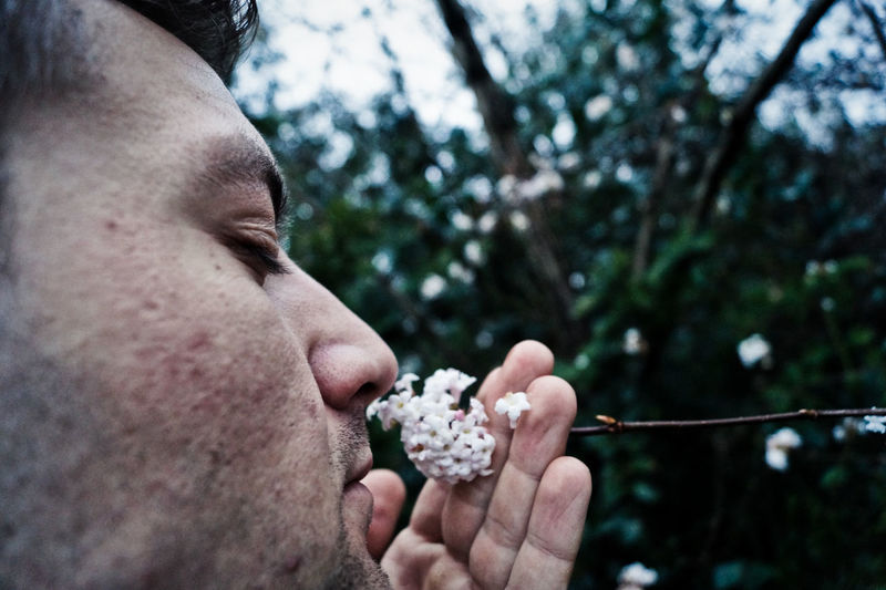 Close-up of man smelling flowers at yard