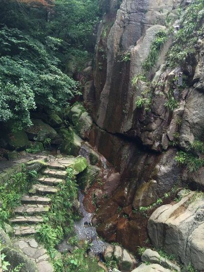Ancient Architecture Ancient Civilization Beauty In Nature Close-up Day Growth Moganshan Nature No People Outdoors Plant Scenics Tranquil Scene Tranquility Tree Wanderlust Waterfall