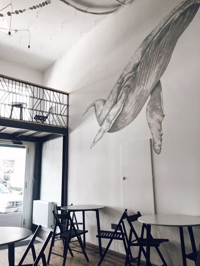 Indoors  No People Day Interior Design Whale Art Wall Wall Art Scandinavian Interior Cafe White Interior Light