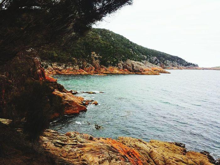 Tasmania Australia Freycinet National Park Sleepybay Rock Formation Scenics Geology Landscape Pink Color Nature Sea Coastline