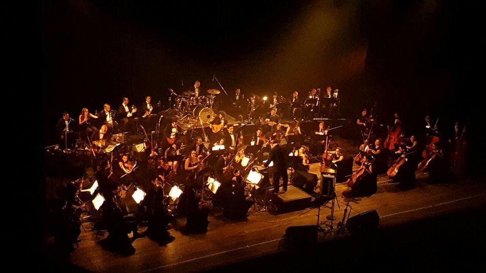 Philarmonic Concert Photography Musicians Concertlivemusic Costa Rica