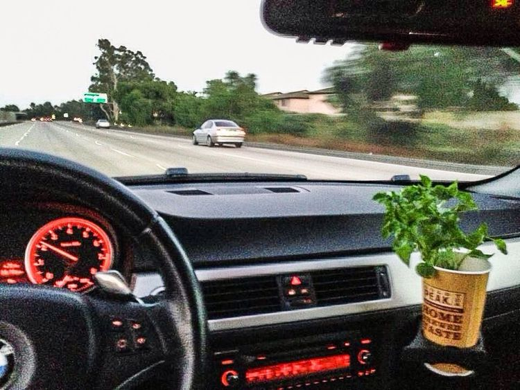 NEM Submissions NEM Street Traveling San Diego California Bmw NEM Culture Greencar
