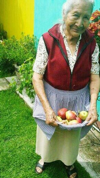 Grandmother Apples Summer