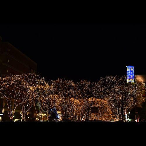 イルミネーション 光のページェント 風景 仙台