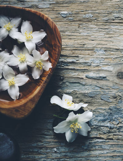 High angle view of white flowers on wooden table