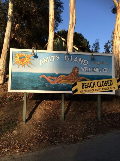 Amity Island Beach Beach Closed Closed Communication Danger Day Guidance Jaws. Outdoors Road Sign Shark Sign Sunlight Text Tree