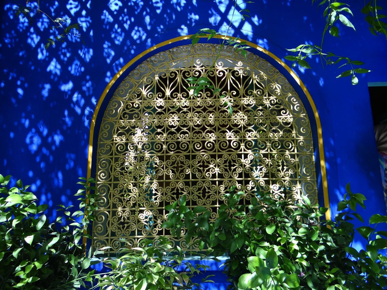 Low Angle View Of Designed Metal Grate On Window By Plants At Majorelle Garden