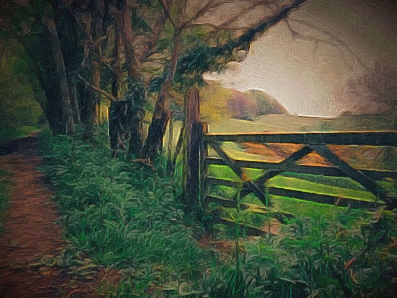 Beauty In Nature Bracken Countryside Gate Gorse Bush Grass Grassy Green Color HDR Hills And Valleys Landscape Moody Nature Nature No People Outdoors Painted Effect Plant Tranquil Scene Tree First Eyeem Photo