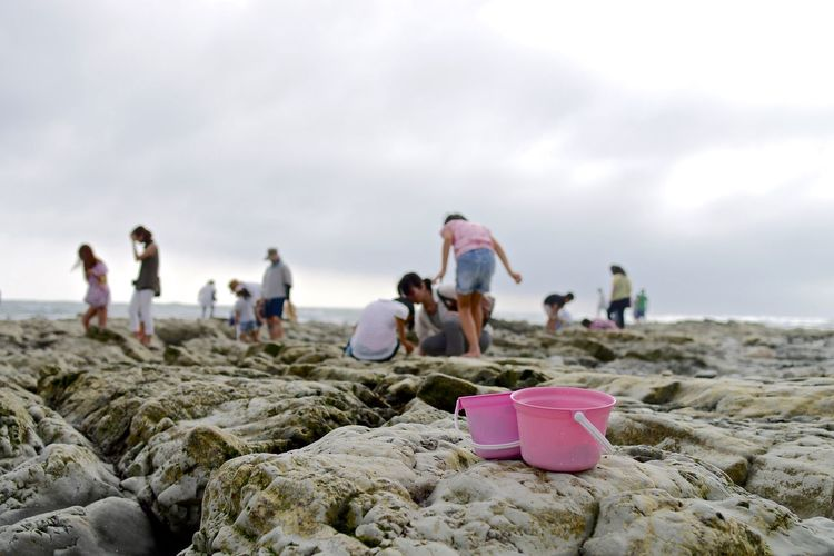 Pink buckets on rocky shore with people in background against sky