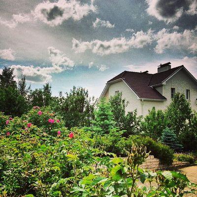 Country Garden Cloudy