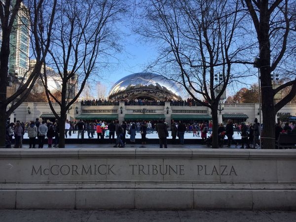 Large Group Of People City Architecture Tree Travel Destinations Bare Tree Real People Tourist Building Exterior Tourism City Life Built Structure Lifestyles Outdoors Men Ice Rink Water Day Crowd Nature Chicago Millennium Park