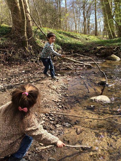 Forrest in the spring Forrest Fishing Health Fun Water Nature Naturelife Playground