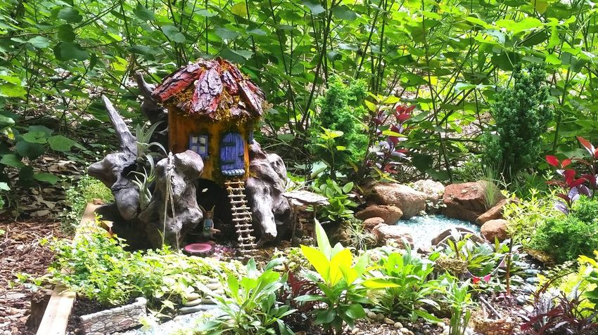 Finding refuge in one's imagination. Fairy Garden Finding Peace Greenery Scenery Minature Garden Beauty In Nature Nature Healing Ending Violence Becoming Change Zilker Botanical Garden Understanding Life Remember Orlando
