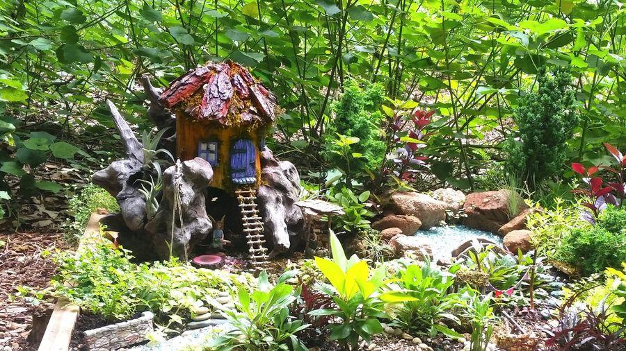 Finding refuge in one's imagination. Fairy Garden Finding Peace Greenery Scenery Minature Garden Beauty In Nature Nature Healing Ending Violence Becoming Change Zilker Botanical Garden Understanding Life Remember Orlando