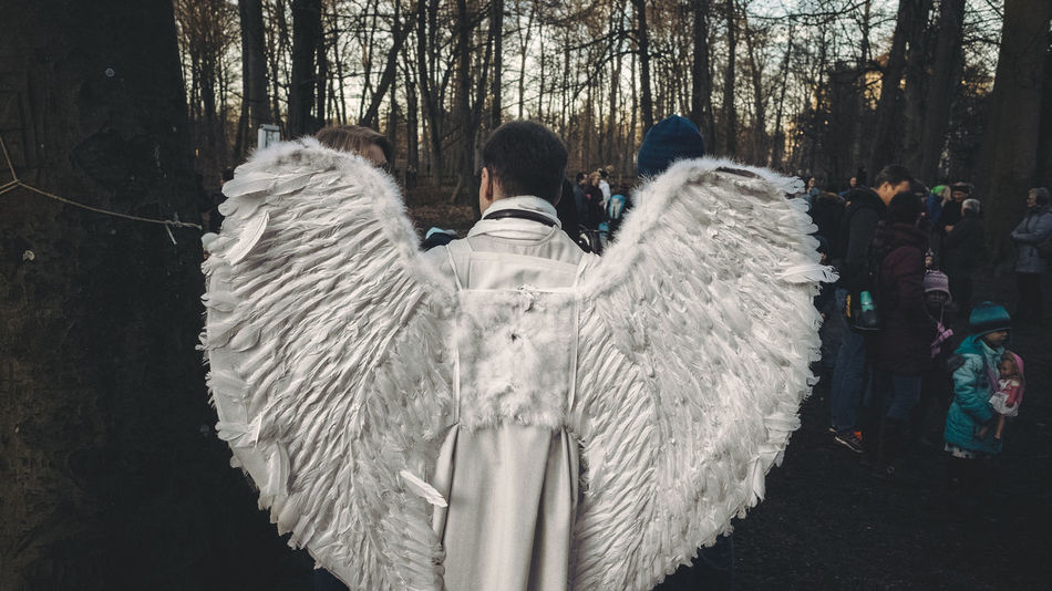 As usual Angel Angel Wings Cold Temperature Day Forest Leisure Activity Lifestyles Men Nature Outdoors People Real People Rear View Tree Warm Clothing Winter Women