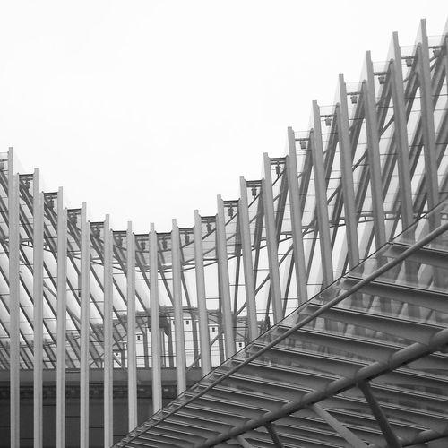Calatrava Architecture Sky Steel Building Exterior Outdoors Stazionemediopadana Av Architetture Architetture_italiane Passion Emiliaromagna Italia Italy Curve