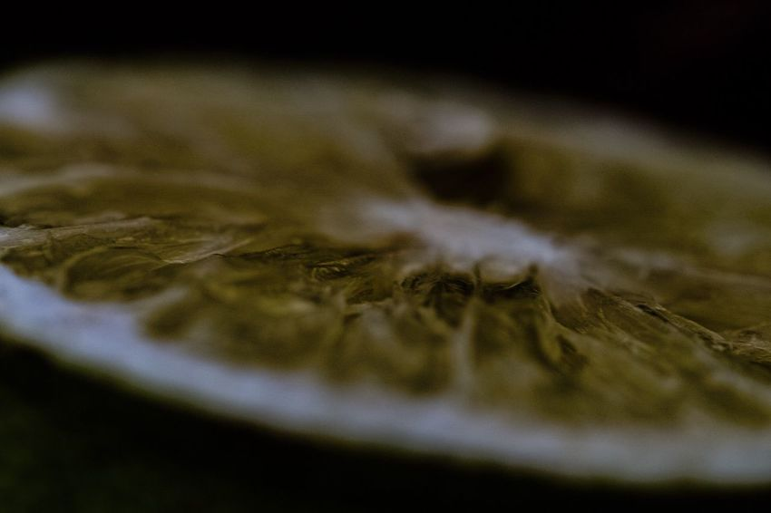 Selective Focus Close-up Leaf No People Nature Autumn Indoors  Fragility Day