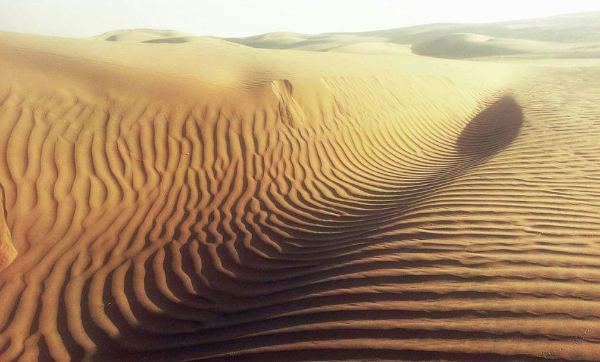 Deserts Around The World Thar Desert Desert Beauty Radjastan India Outdoors