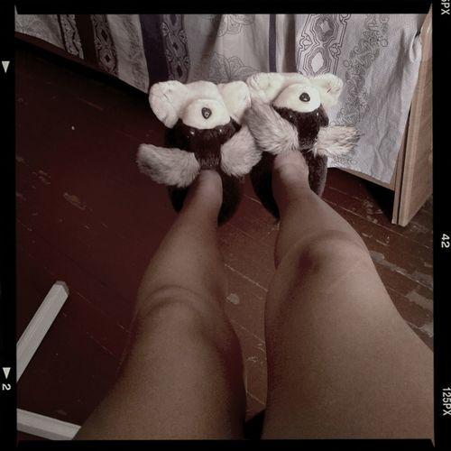 Тапули мои
