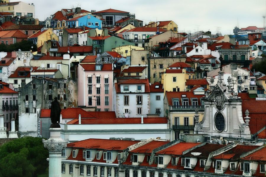 Roofs Roofs Of Houses Roofs From Above Urban Skyline Residential Area Close-up Building Exterior Architecture Crowded Built Structure Picturesque Urban Photography Street Photography Urban Exploration Street Of Lisbon Lisbon - Portugal Lisbon, Portugal Lisabon Embrace Urban Life Lisbon Streets 3XSPUnity