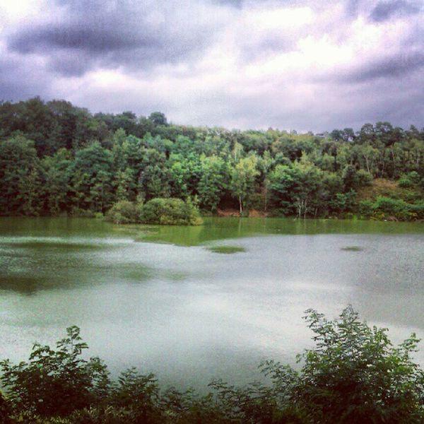 Green lake #koeln #köln #cologne #wahnerheide #koenigsforst #radtour #biketour #natur #nature #lake #see #igerscologne See Koeln Igerscologne Radtour Biketour Wahnerheide Koenigsforst Nature Natur Cologne Lake Köln