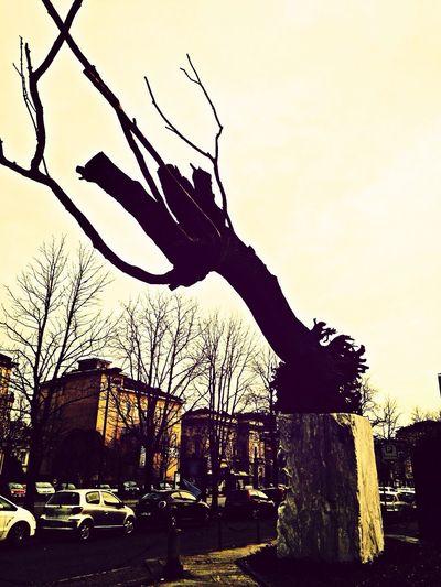 Torino, GAM