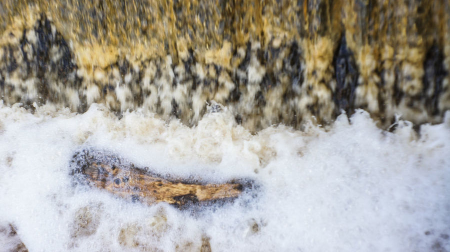 The log in the waterfall Beauty In Nature Close-up Day Motion Nature No People Outdoors Power In Nature Water Wave