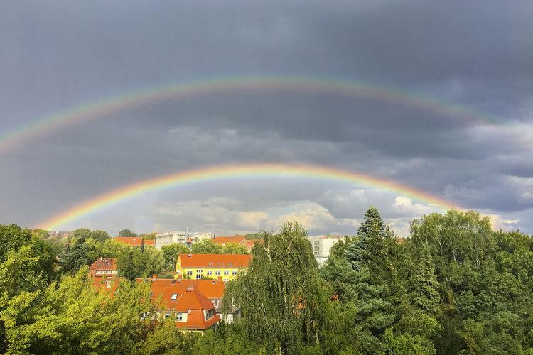 Rainbow over houses and trees against sky