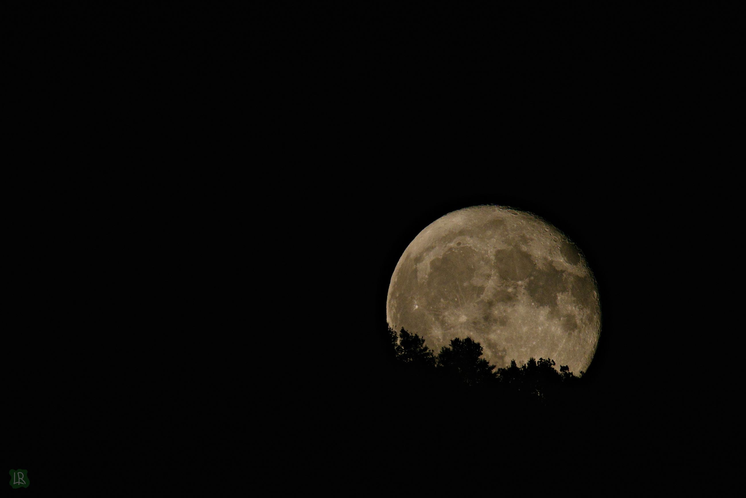 moon, sky, space, night, astronomy, copy space, planetary moon, scenics - nature, beauty in nature, tranquility, tranquil scene, no people, low angle view, circle, moon surface, nature, clear sky, full moon, geometric shape, dark, outdoors, moonlight, space and astronomy