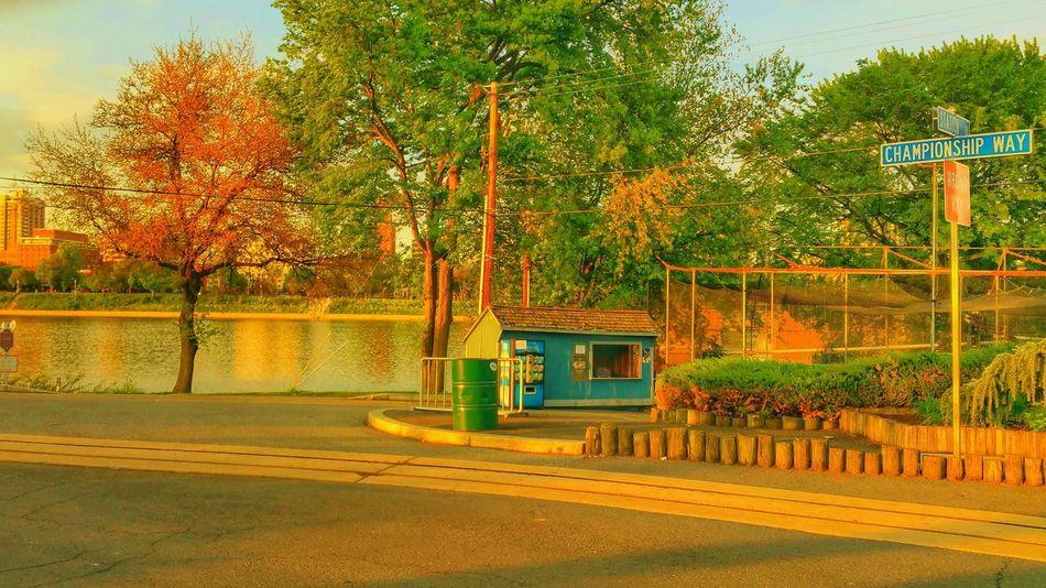 Harrisburg Harrisburg, Pa City Island EyeEm Best Shots Followme Summer Views Follow Summer Nature Susquehannariver,