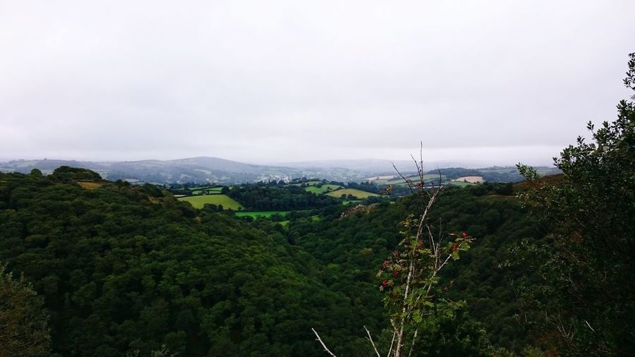 Vally View Landscape Chagford