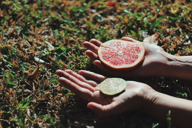Person Fruit Food And Drink Holding One Person Focus Object Freshness Outdoors Healthy Eating Close-up Food Human Body Part Day Red Lemon Pomegranate Eye4photography  Blood Orange Grass Freshness Food And Drink Hand Nature Focus Objects SLICE