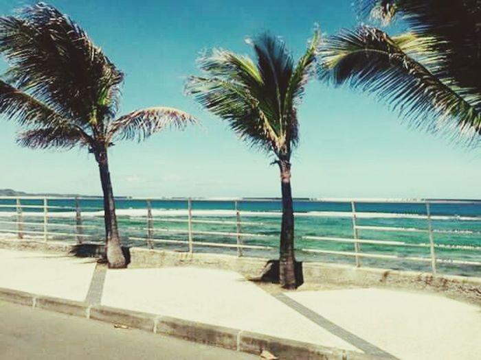 En Guadeloupe, mon île natale ^-^ Guadeloupe Mer Iles  Soleil Sun ☀ Paysage Oklm