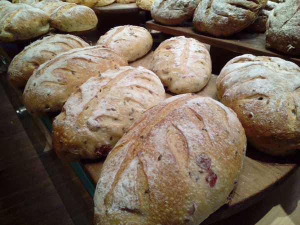 Fresh Baked Bread Loaves Of Bread Grain Bread Artisan Bread Jakarta Indonesia Hidden Gems  Food And Drink Food Baked Freshness No People Indoors  Healthy Eating Close-up Loaf Of Bread Day Ready-to-eat