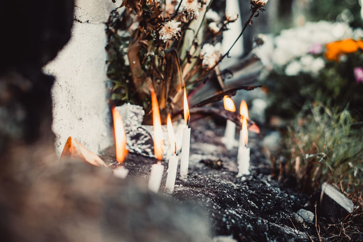 burning candles Mourning Burial Bereavement Sunset Autumn Burning Heat - Temperature Nature Selective Focus Fire Fire - Natural Phenomenon Flame Day Outdoors Log Close-up Ash Orange Color Wood Burnt Candle Cemetery Backgrounds Object Copy Space Flower Grass Soul Death Funeral Autumn Mood Capture Tomorrow