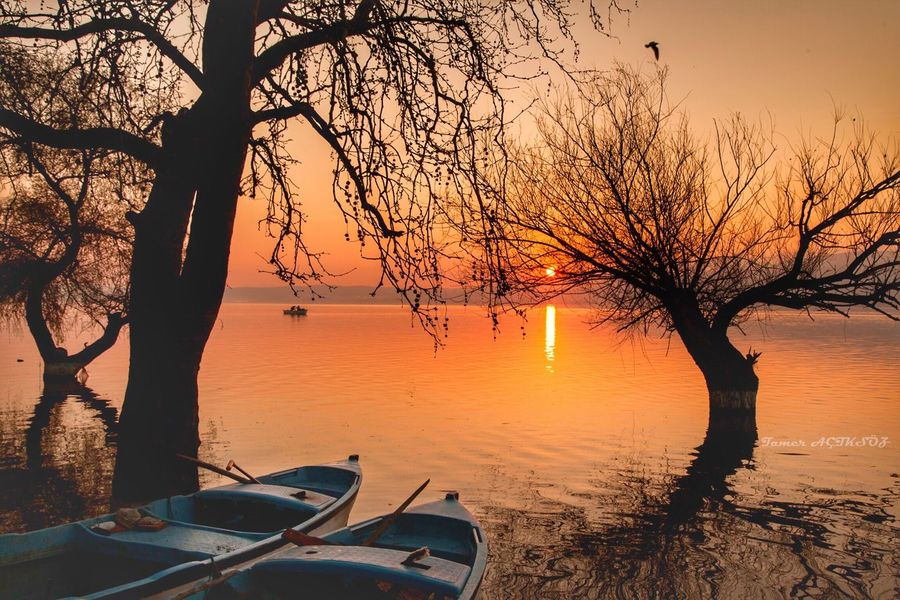 Gölyazı Sunset Mode Of Transport Nature Water Transportation Nautical Vessel Tree Beauty In Nature Bare Tree No People Sky Tranquility Branch Scenics Outdoors Day
