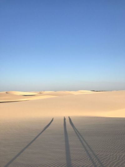 Scenics Tranquil Scene Nature Sand Outdoors Sand Dune Desert Shadow Beauty In Nature Landscape