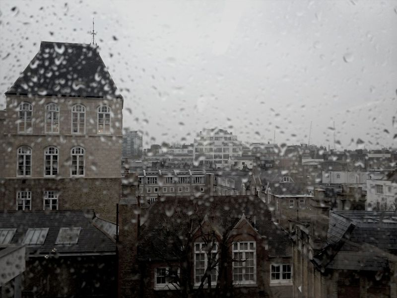 Rainy Day Lookingout