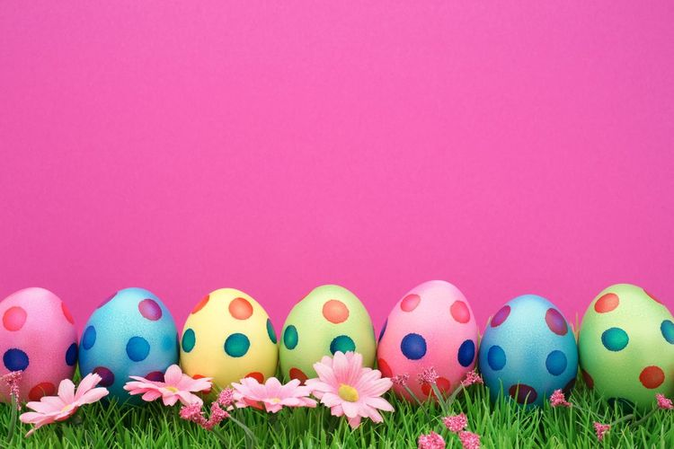 Happy easter eggs background with pink Vibrant Color Pink Copy Space Nonody Easter Eggs Easter Ostern Pink Color Multi Colored Group Of Objects Colored Background Copy Space Celebration Easter No People Holiday Easter Egg Egg Group Green Color Decoration In A Row Vibrant Color Food Springtime