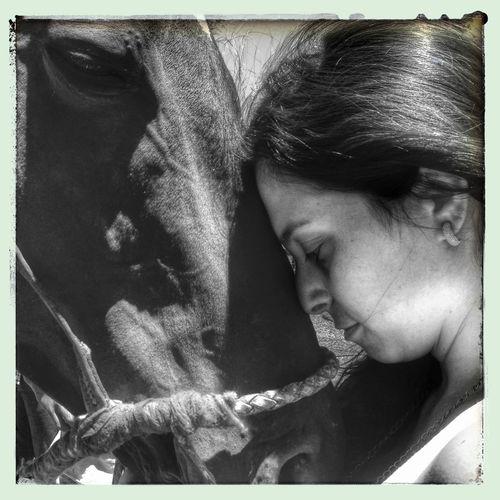 @Irulitos Love Horses // Popckorn