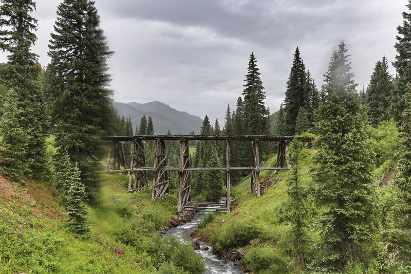 Beautiful rainy day in the mountains of Colorado Cloudy Colorado Exploring Green Rain Telluride Trees Wanderlust Adventure Evergreen Forest Kerry Estey Keith Landscape Lizard Head Pass Mountain Mountains Nature No People River San Juan Mountains Sky Stormy Trestle Trout Creek Water