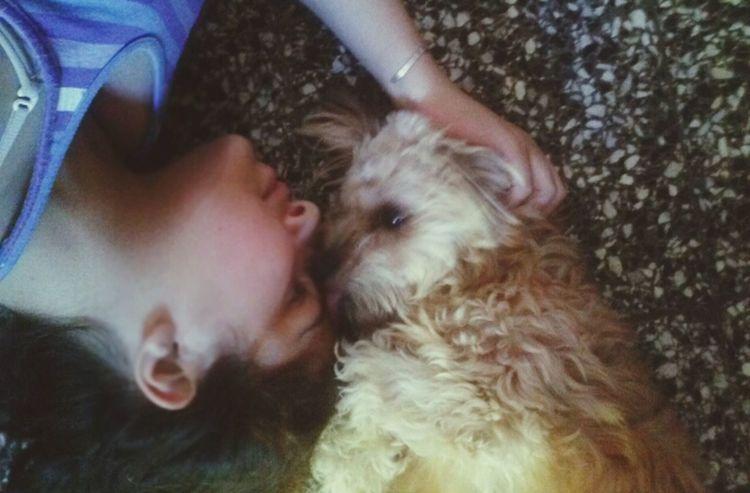 Puppy Love Lick Tongue