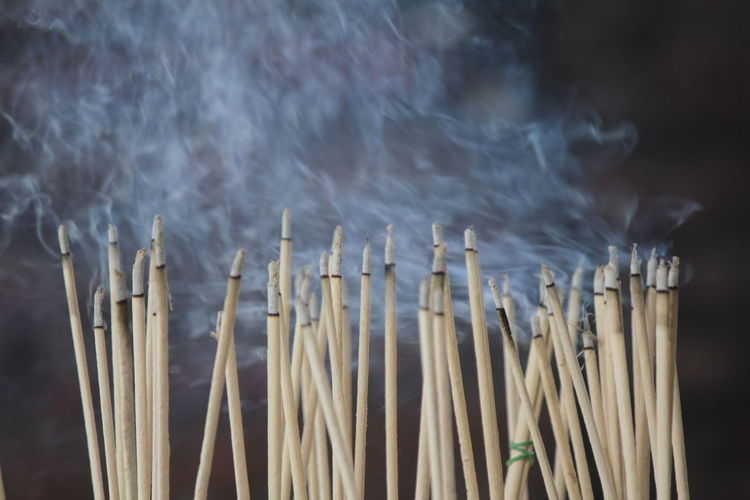 The incense burned to worship the buddha and the sacred.