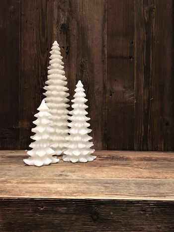 my cozy place Advent Arrangement Celebration Christmas Christmas Decoration Christmas Tree Christmas Trees Cozy Cozy Place Decoration Familiy Home Fir Tree Indoors  Interior Design No People Three Together Tradition Tree Triple Wax White And Brown White Trees Wood Wood - Material