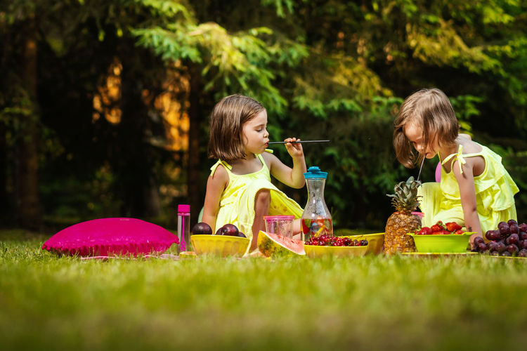 Picnic Girl Child Childhood Kid Forest Summer Sister Sisters Twins Girls Women Females Grass Family Togetherness Food And Drink Lifestyles Leisure Activity Real People Food Two People Nature Selective Focus People Plant Boys Outdoors