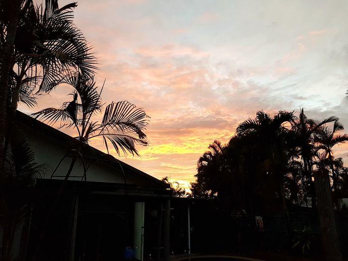 dawn, Qld