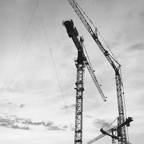 Cranes against