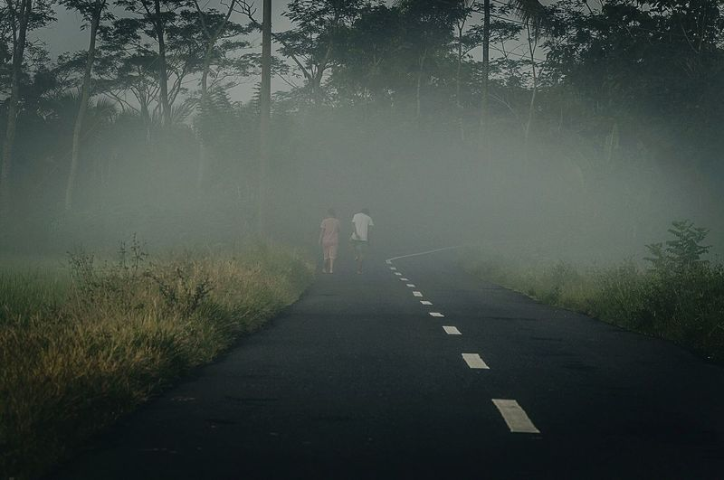 Rear view of two people walking on country road