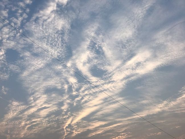 The Sky shortly after sunrise! Sunrise Early Riser Early Morning Flying Bird Animal Themes Animal Wildlife Animal Nature Beauty In Nature